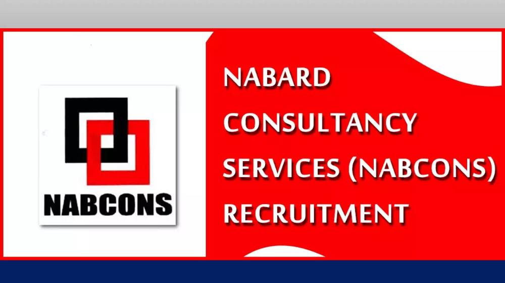 NABCONS Recruitment 2020 - Skill 05 Data Manager & Team Leader Posts